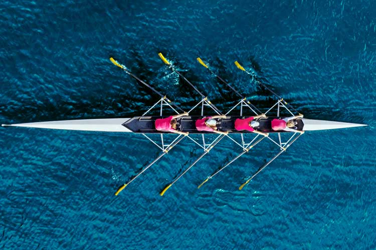 Vertical view of people rowing | Image