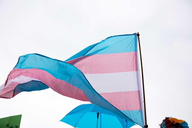transgender flag flying in wind LGBTQI symbol