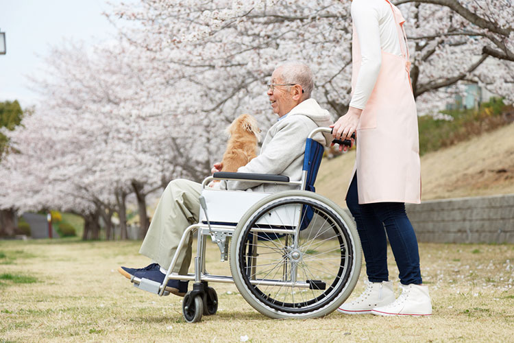 old man with dementia in wheelchair is able to move around outside the aged care facility
