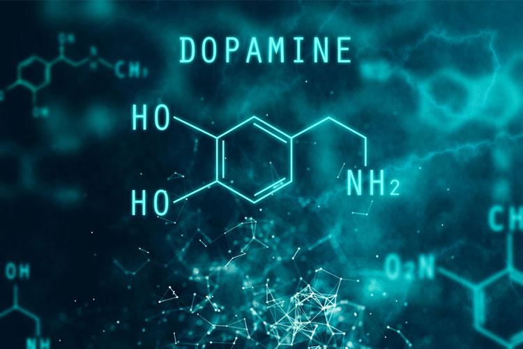 Dopamine molecular compound | Image