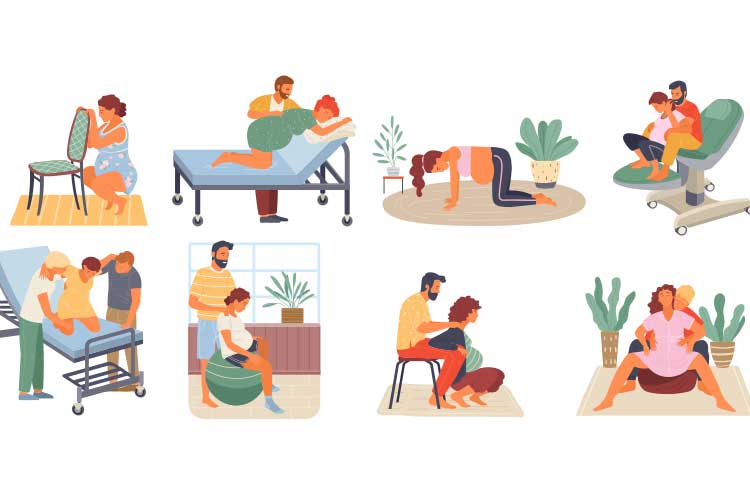 Various birthing positions vector | Image