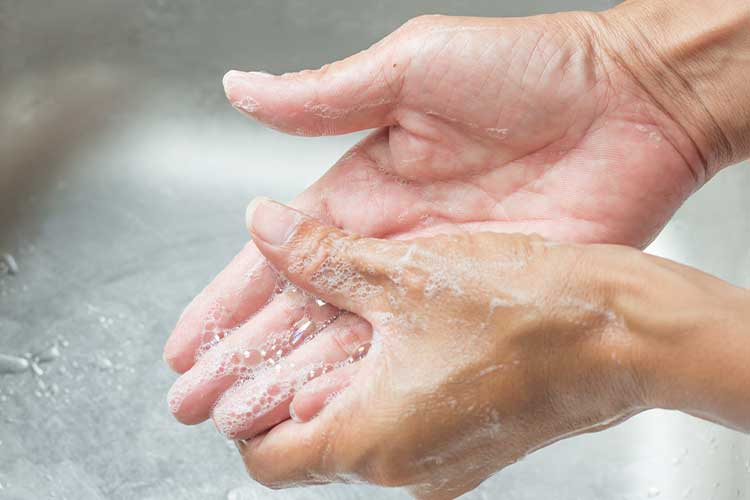 handwashing hands