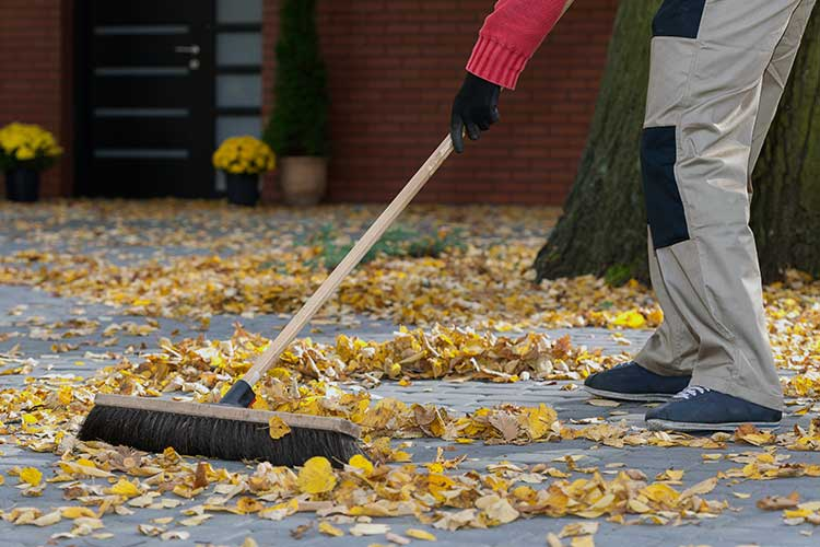 sweeping leaves in backyard to prevent falls outside