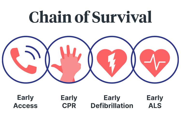 basic life support chain of survival diagram