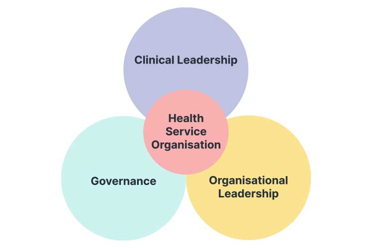 health service organisation leadership diagram