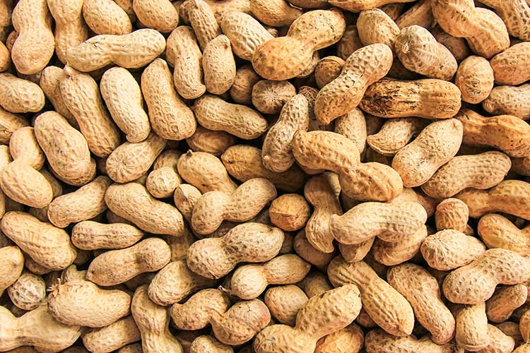 anaphylaxis food peanuts