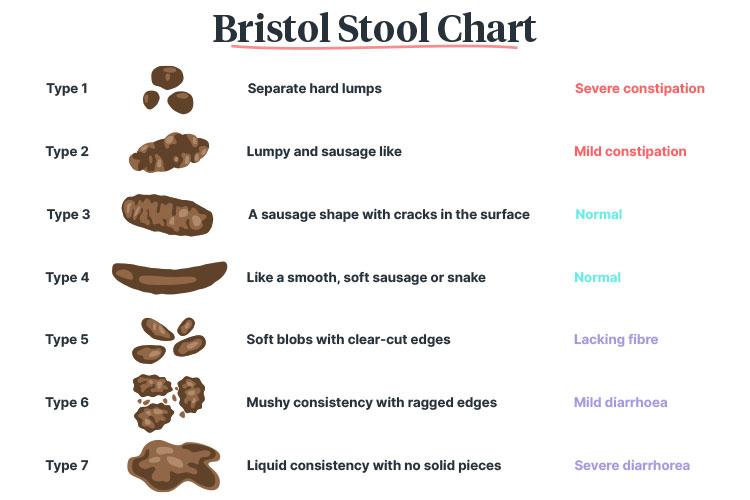complex bowel care bristol stool chart